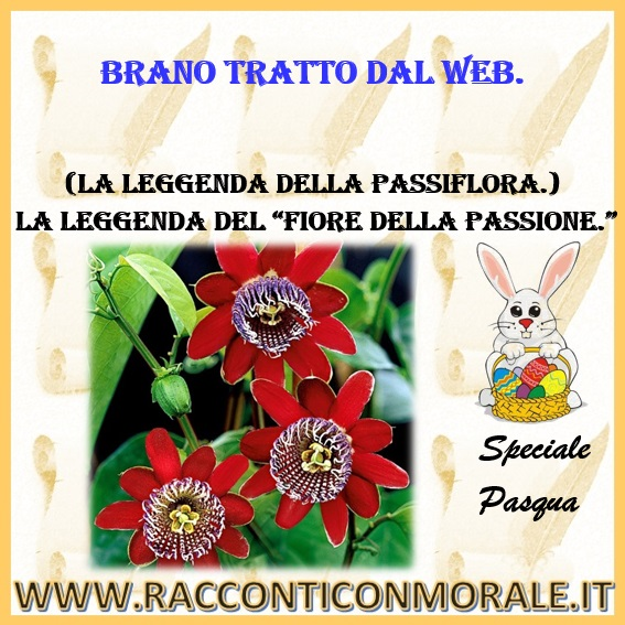 """La leggenda del """"Fiore della Passione."""" (La leggenda della Passiflora)"""